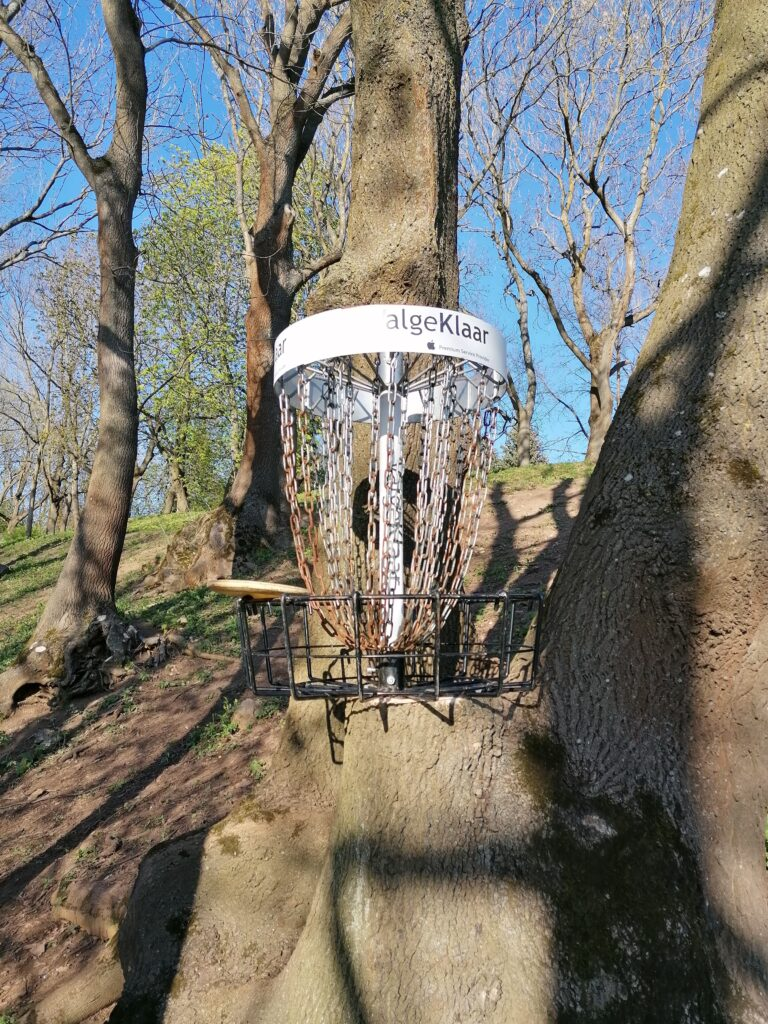 disc golf putter standing on the rim